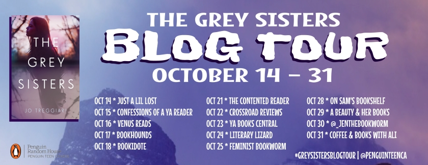 Grey Sisters Blog Tour.jpg